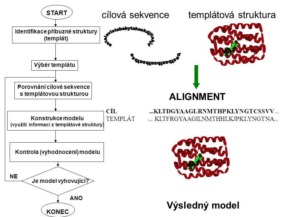 cílová sekvencetemplátová struktura ALIGNMENT CÍL...KLTDGYAAGLRNMTHPKLYNGTCSSVV...