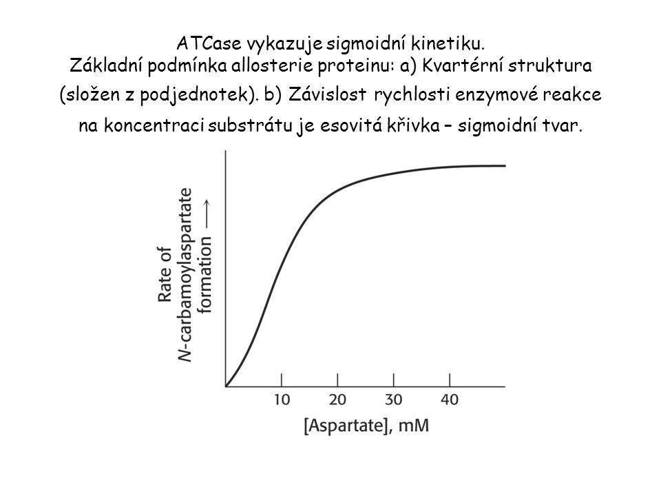 ATCase vykazuje sigmoidní kinetiku.