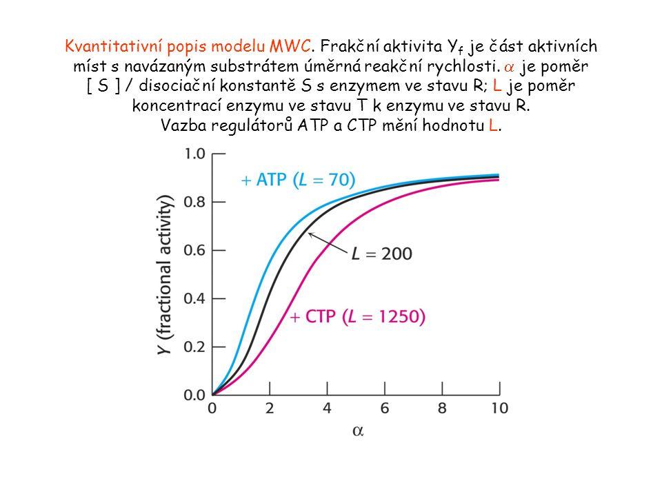 Kvantitativní popis modelu MWC.