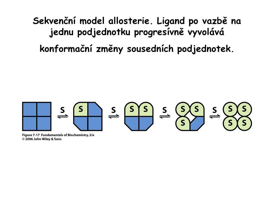 Sekvenční model allosterie.