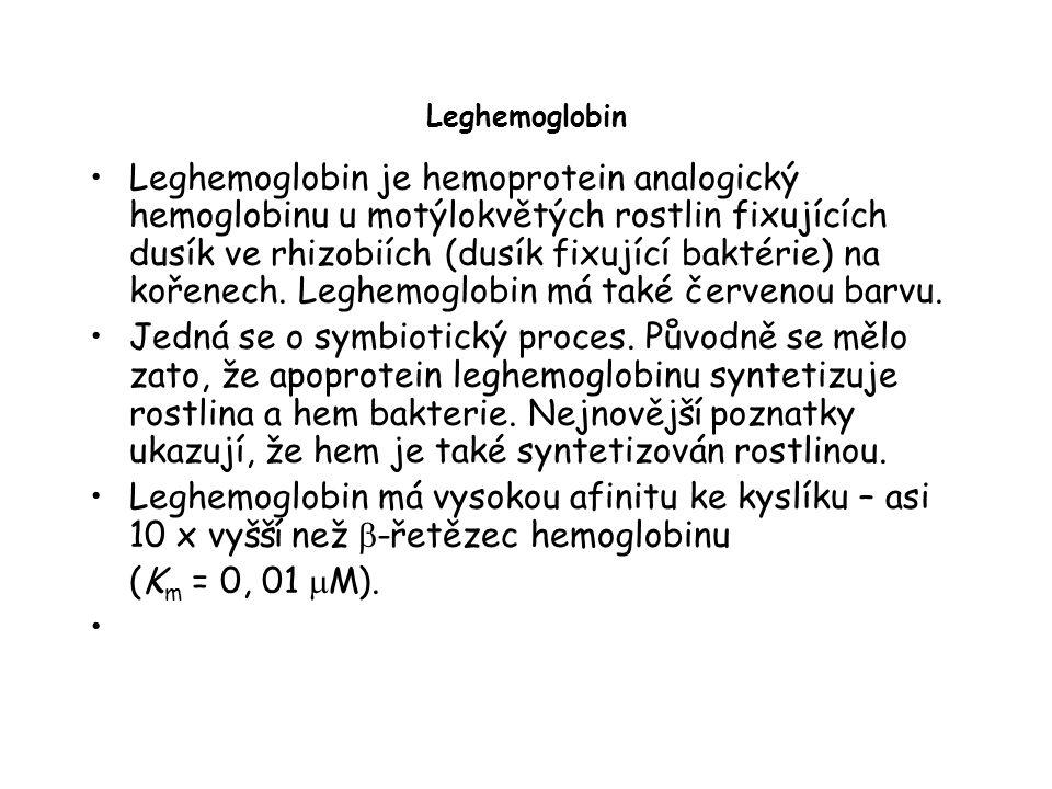 Leghemoglobin Leghemoglobin je hemoprotein analogický hemoglobinu u motýlokvětých rostlin fixujících dusík ve rhizobiích (dusík fixující baktérie) na kořenech.