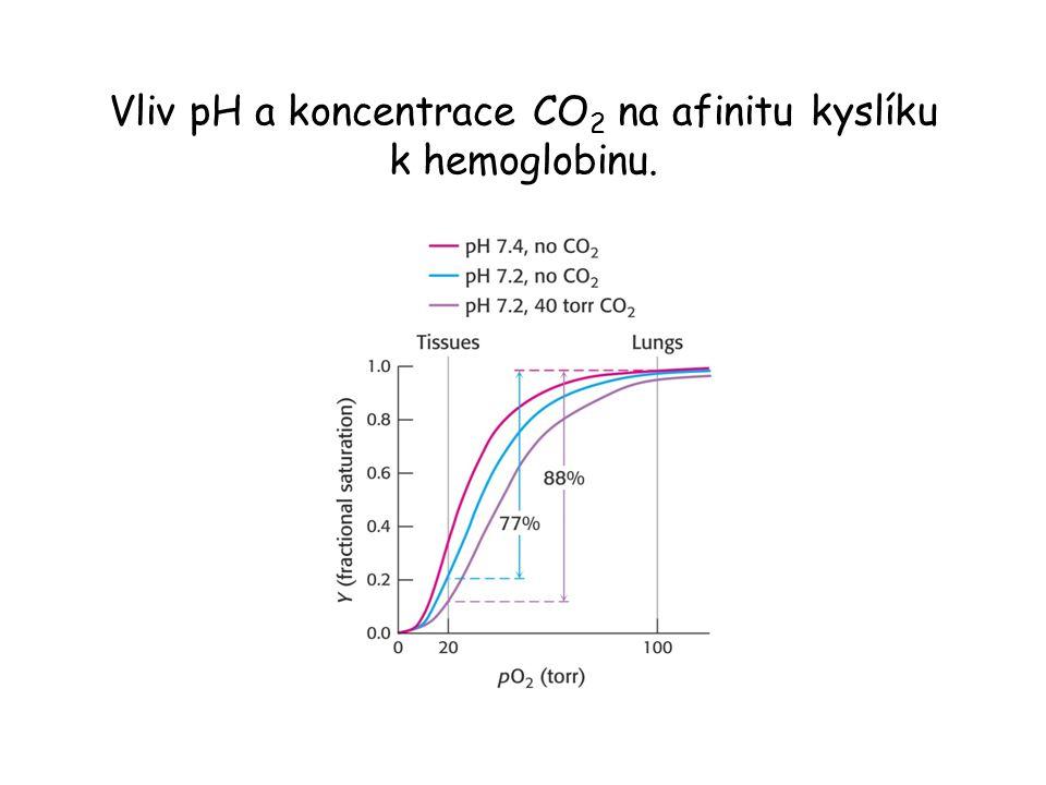 Vliv pH a koncentrace CO 2 na afinitu kyslíku k hemoglobinu.