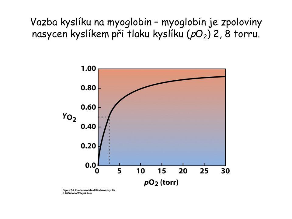 Vazba kyslíku na myoglobin – myoglobin je zpoloviny nasycen kyslíkem při tlaku kyslíku (pO 2 ) 2, 8 torru.