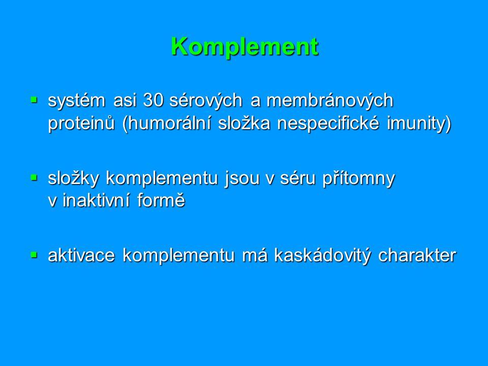 Uplatnění komplementu - přehled  Zánět (degranulace mastocytů, zvýšená cévní permeabilita, kontrakce hladké svaloviny, chemotaxe, vycestování polymorfonukleárů, aktivace polymorfonukleárů, NK-bb.