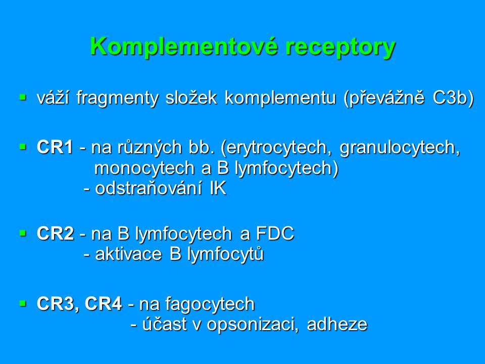 Komplementové receptory  váží fragmenty složek komplementu (převážně C3b)  CR1 - na různých bb. (erytrocytech, granulocytech, monocytech a B lymfocy