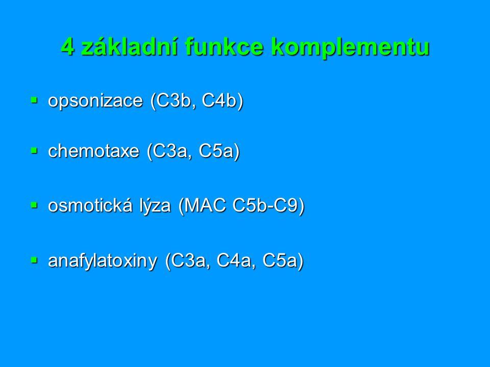 4 základní funkce komplementu  opsonizace (C3b, C4b)  chemotaxe (C3a, C5a)  osmotická lýza (MAC C5b-C9)  anafylatoxiny (C3a, C4a, C5a)