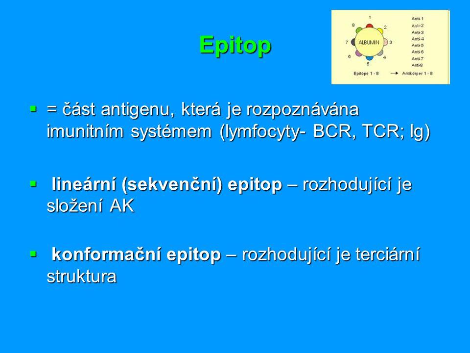 Epitop  = část antigenu, která je rozpoznávána imunitním systémem (lymfocyty- BCR, TCR; Ig)  lineární (sekvenční) epitop – rozhodující je složení AK