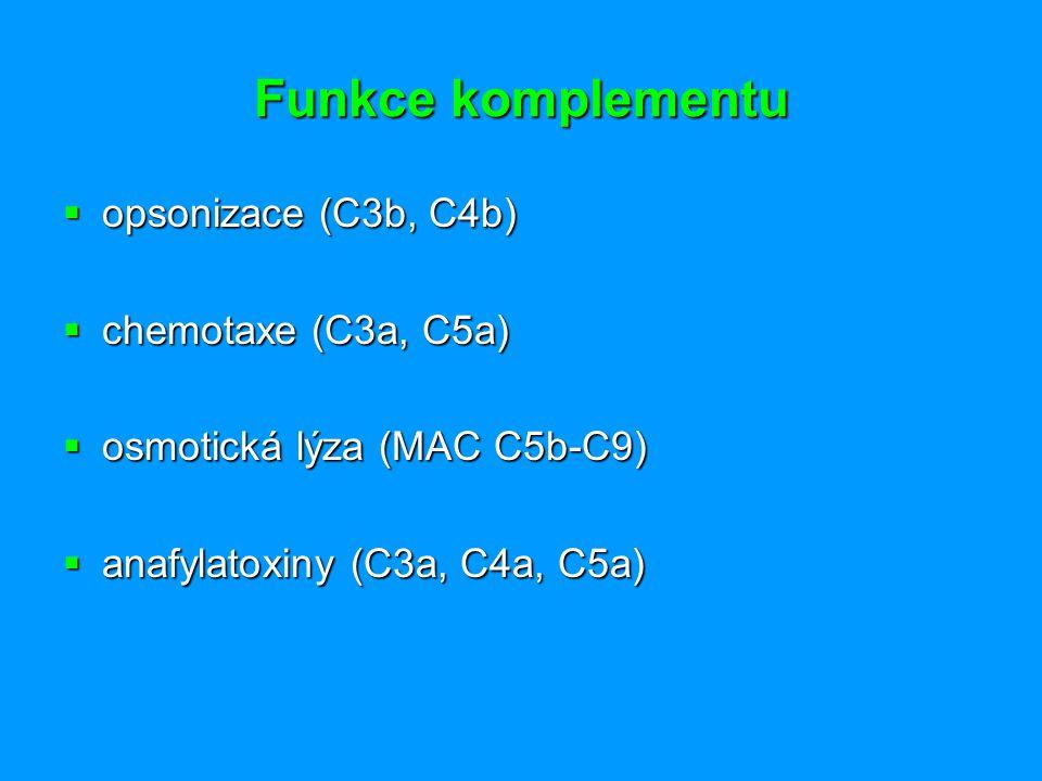 Funkce komplementu  opsonizace (C3b, C4b)  chemotaxe (C3a, C5a)  osmotická lýza (MAC C5b-C9)  anafylatoxiny (C3a, C4a, C5a)