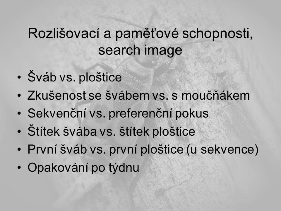 Rozlišovací a paměťové schopnosti, search image Šváb vs.