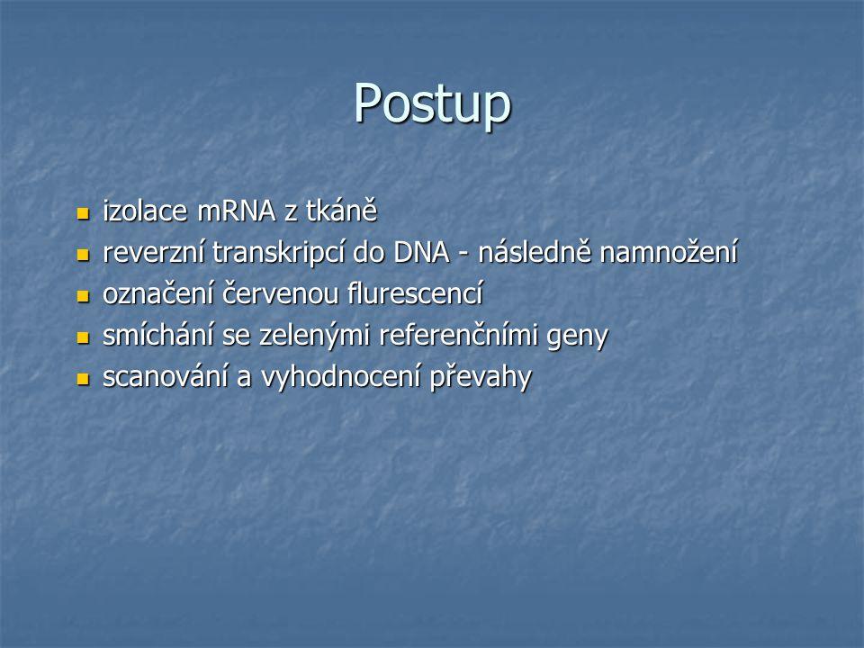 Postup izolace mRNA z tkáně izolace mRNA z tkáně reverzní transkripcí do DNA - následně namnožení reverzní transkripcí do DNA - následně namnožení označení červenou flurescencí označení červenou flurescencí smíchání se zelenými referenčními geny smíchání se zelenými referenčními geny scanování a vyhodnocení převahy scanování a vyhodnocení převahy