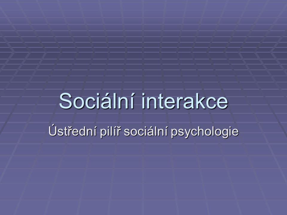 Sociální interakce Ústřední pilíř sociální psychologie