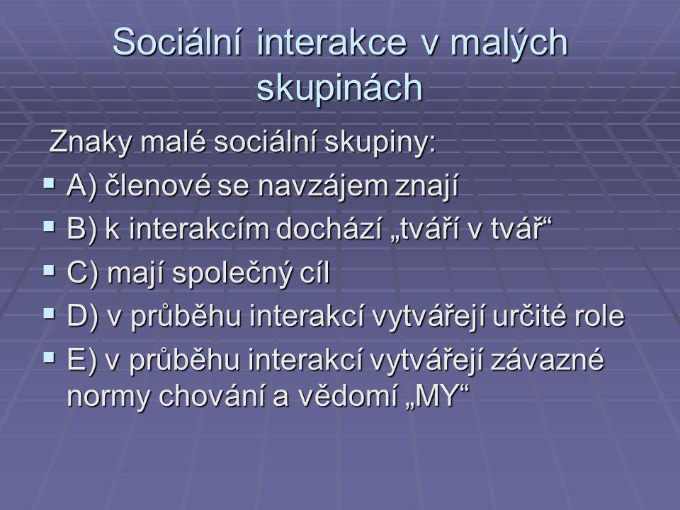 Sociální interakce v malých skupinách Znaky malé sociální skupiny: Znaky malé sociální skupiny:  A) členové se navzájem znají  B) k interakcím dochá