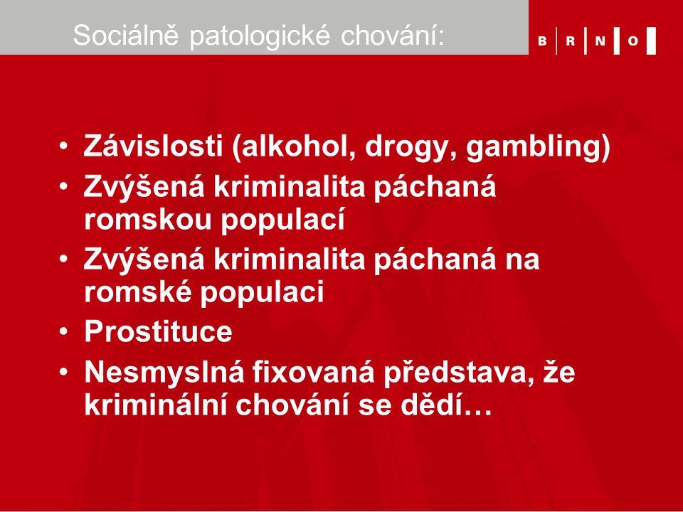 Sociálně patologické chování: Závislosti (alkohol, drogy, gambling) Zvýšená kriminalita páchaná romskou populací Zvýšená kriminalita páchaná na romské