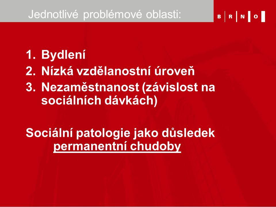 Jednotlivé problémové oblasti: 1.Bydlení 2.Nízká vzdělanostní úroveň 3.Nezaměstnanost (závislost na sociálních dávkách) Sociální patologie jako důsled