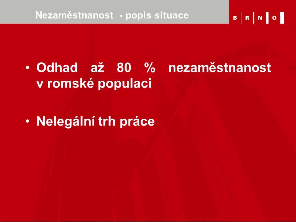 Nezaměstnanost - popis situace Odhad až 80 % nezaměstnanost v romské populaci Nelegální trh práce