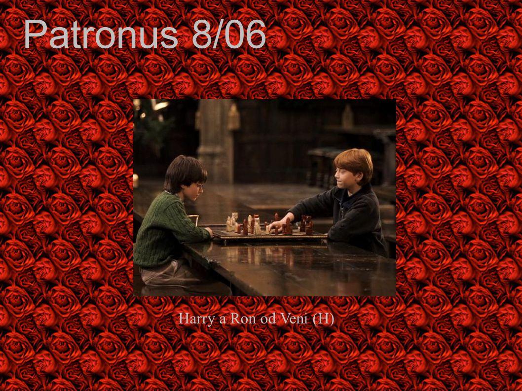 Patronus 8/06 Harry a Ron od Veni (H)