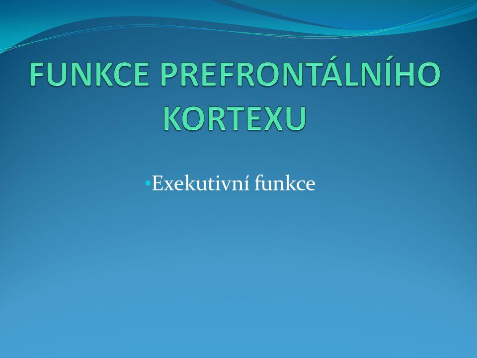 Exekutivní funkce