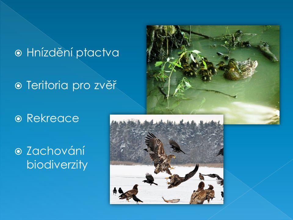  Hnízdění ptactva  Teritoria pro zvěř  Rekreace  Zachování biodiverzity