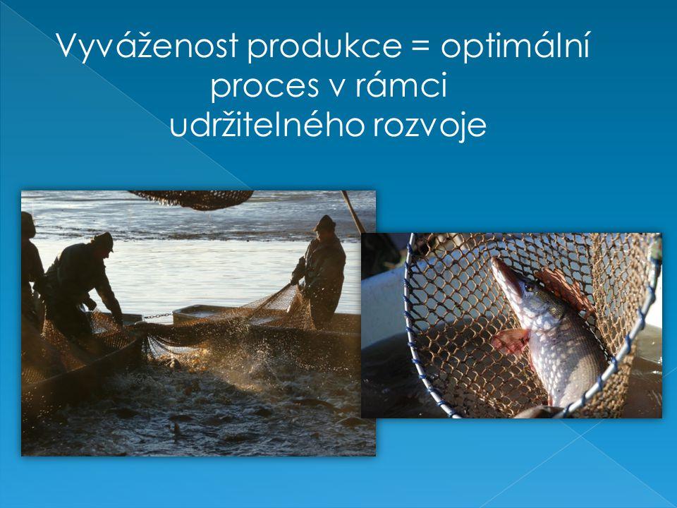 Vyváženost produkce = optimální proces v rámci udržitelného rozvoje
