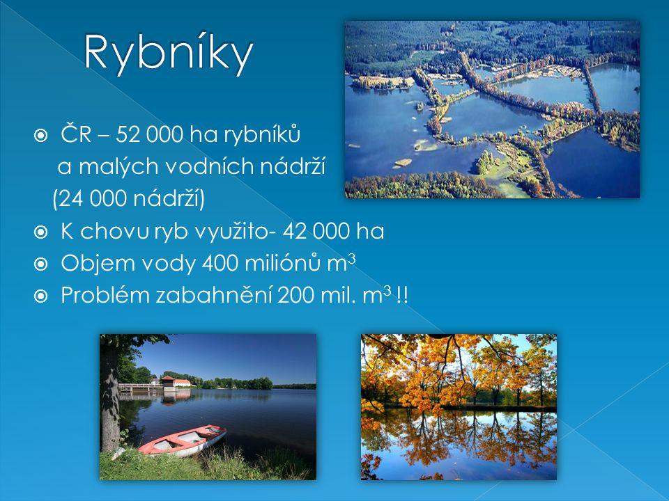  ČR – 52 000 ha rybníků a malých vodních nádrží (24 000 nádrží)  K chovu ryb využito- 42 000 ha  Objem vody 400 miliónů m 3  Problém zabahnění 200 mil.