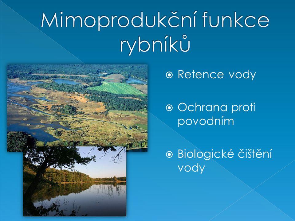  Retence vody  Ochrana proti povodním  Biologické čištění vody