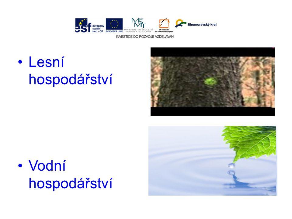 Lesní hospodářství Vodní hospodářství