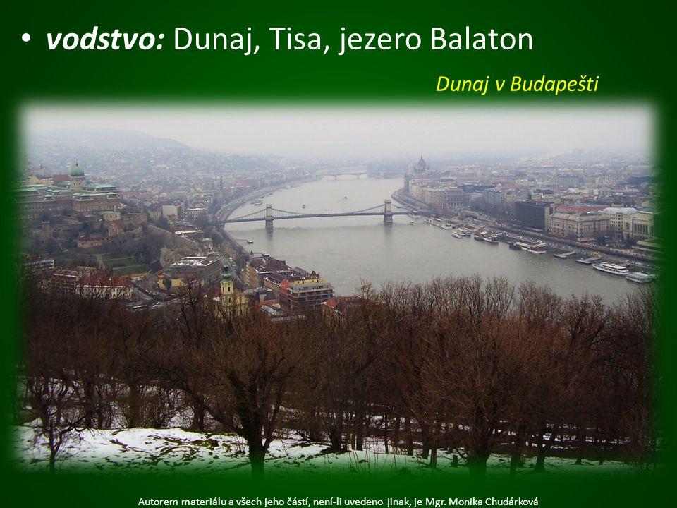 vodstvo: Dunaj, Tisa, jezero Balaton Autorem materiálu a všech jeho částí, není-li uvedeno jinak, je Mgr. Monika Chudárková Dunaj v Budapešti