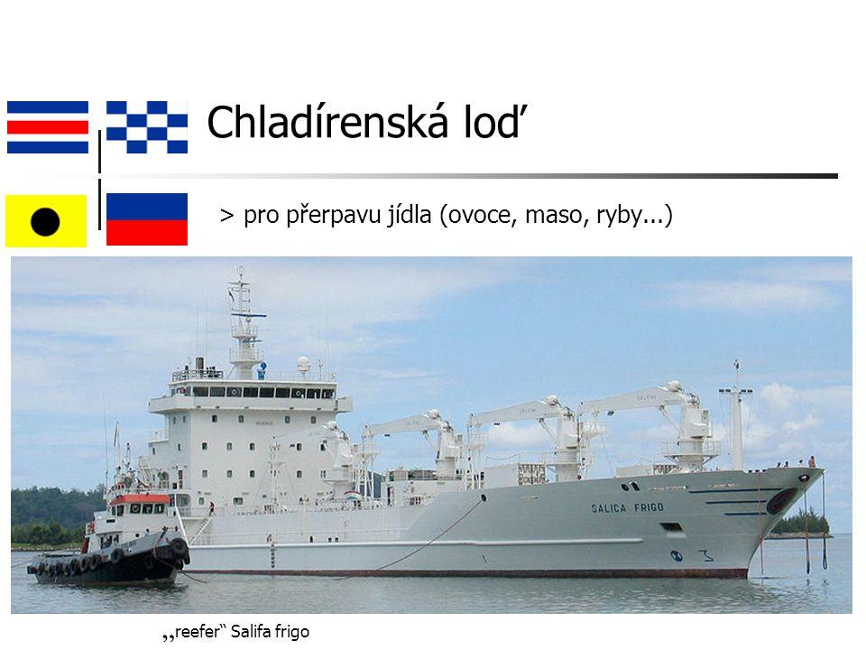 """Chladírenská loď > pro přerpavu jídla (ovoce, maso, ryby...) """" reefer Salifa frigo"""
