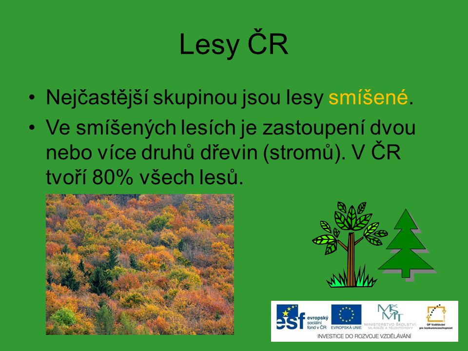Lesy ČR Nejčastější skupinou jsou lesy smíšené. Ve smíšených lesích je zastoupení dvou nebo více druhů dřevin (stromů). V ČR tvoří 80% všech lesů.
