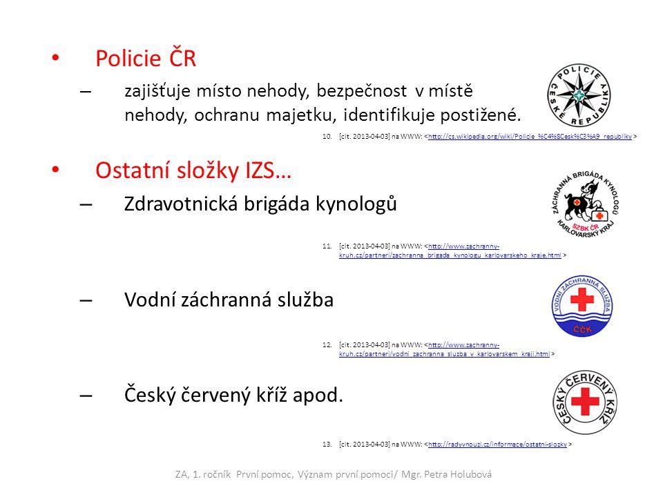 Policie ČR – zajišťuje místo nehody, bezpečnost v místě nehody, ochranu majetku, identifikuje postižené. Ostatní složky IZS… – Zdravotnická brigáda ky