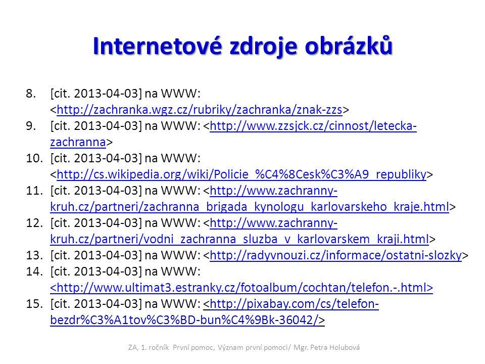 Internetové zdroje obrázků 8.[cit. 2013-04-03] na WWW: http://zachranka.wgz.cz/rubriky/zachranka/znak-zzs 9.[cit. 2013-04-03] na WWW: http://www.zzsjc