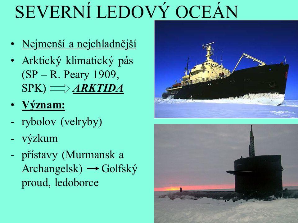 SEVERNÍ LEDOVÝ OCEÁN Nejmenší a nejchladnější Arktický klimatický pás (SP – R. Peary 1909, SPK) ARKTIDA Význam: -rybolov (velryby) -výzkum -přístavy (