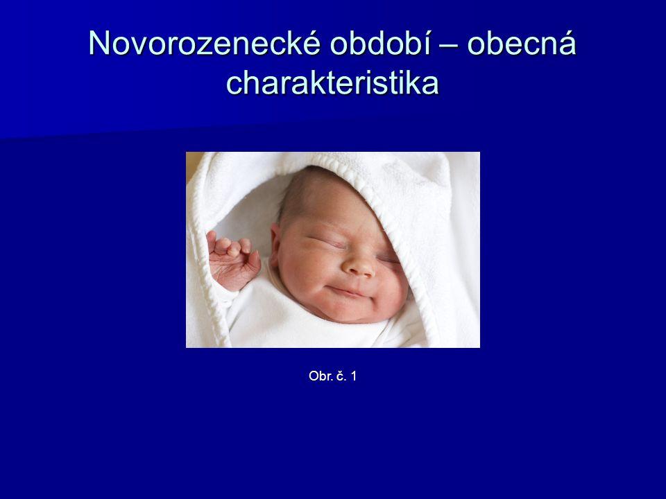Novorozenecké období – obecná charakteristika Matka pobývá s dítětem v jednom pokoji (tzv.