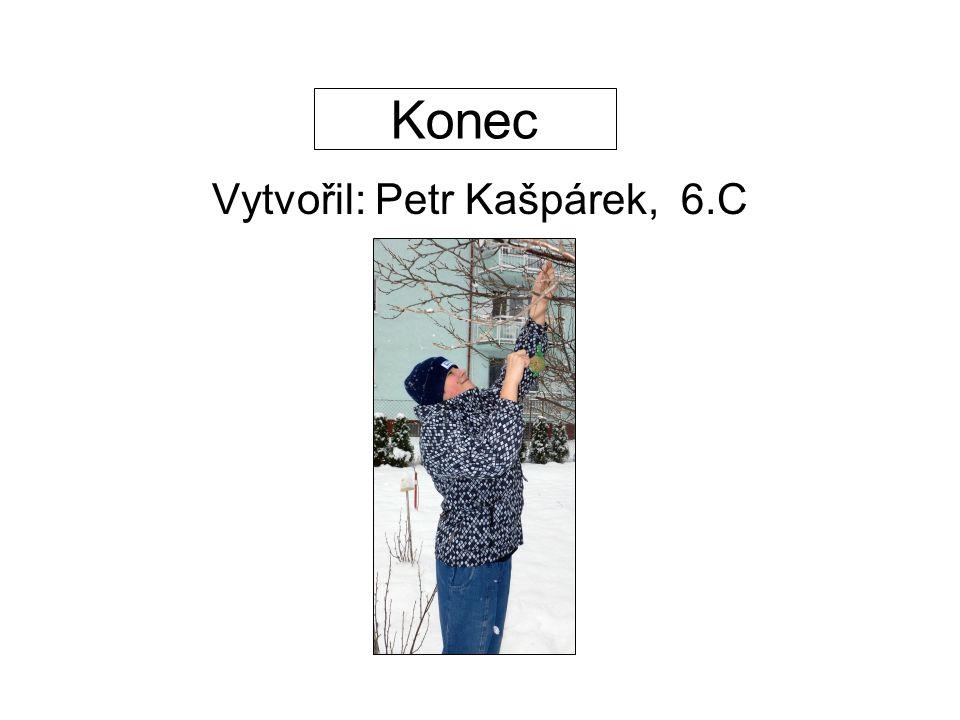 Konec Vytvořil: Petr Kašpárek, 6.C