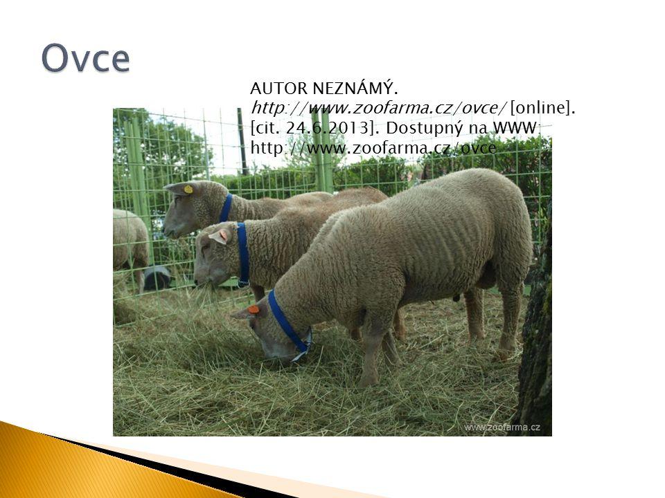 AUTOR NEZNÁMÝ.http://www.zoofarma.cz/ovce/ [online].
