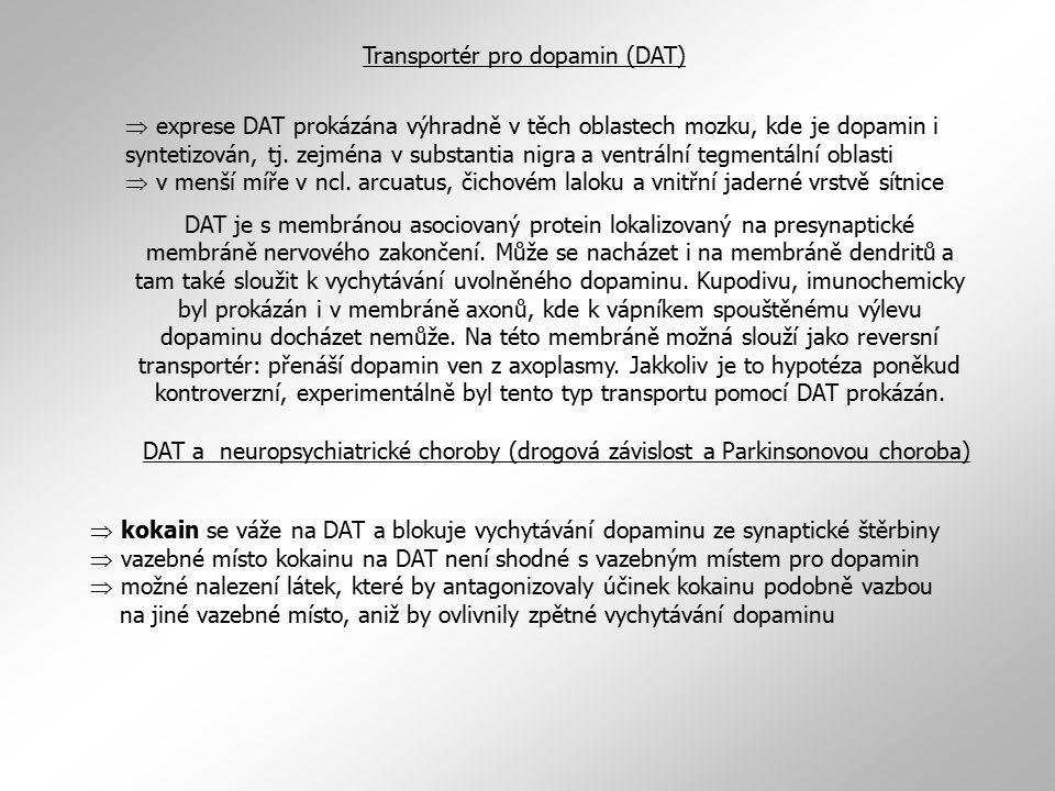 Transportér pro dopamin (DAT)  exprese DAT prokázána výhradně v těch oblastech mozku, kde je dopamin i syntetizován, tj.