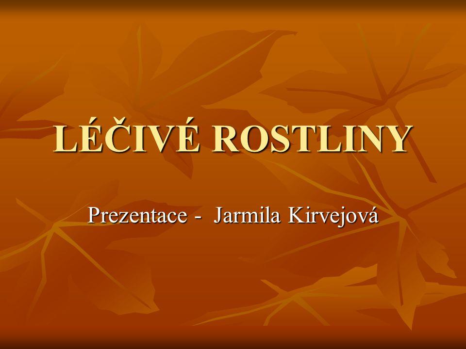 LÉČIVÉ ROSTLINY Prezentace - Jarmila Kirvejová