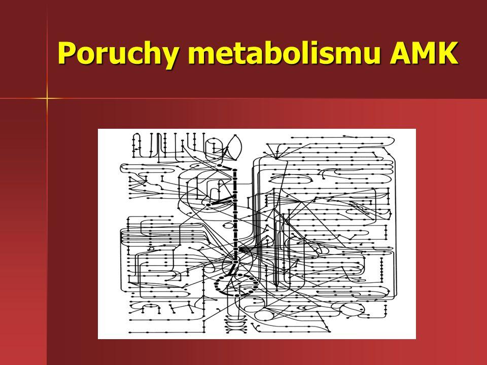 Struktura AMK ?