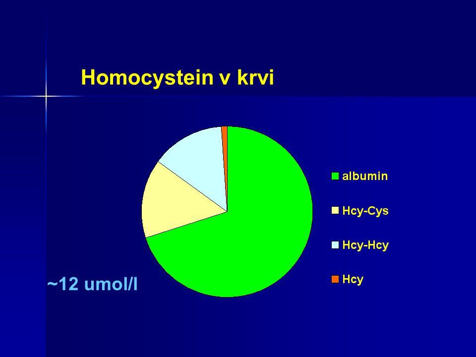 ~12 umol/l Homocystein v krvi