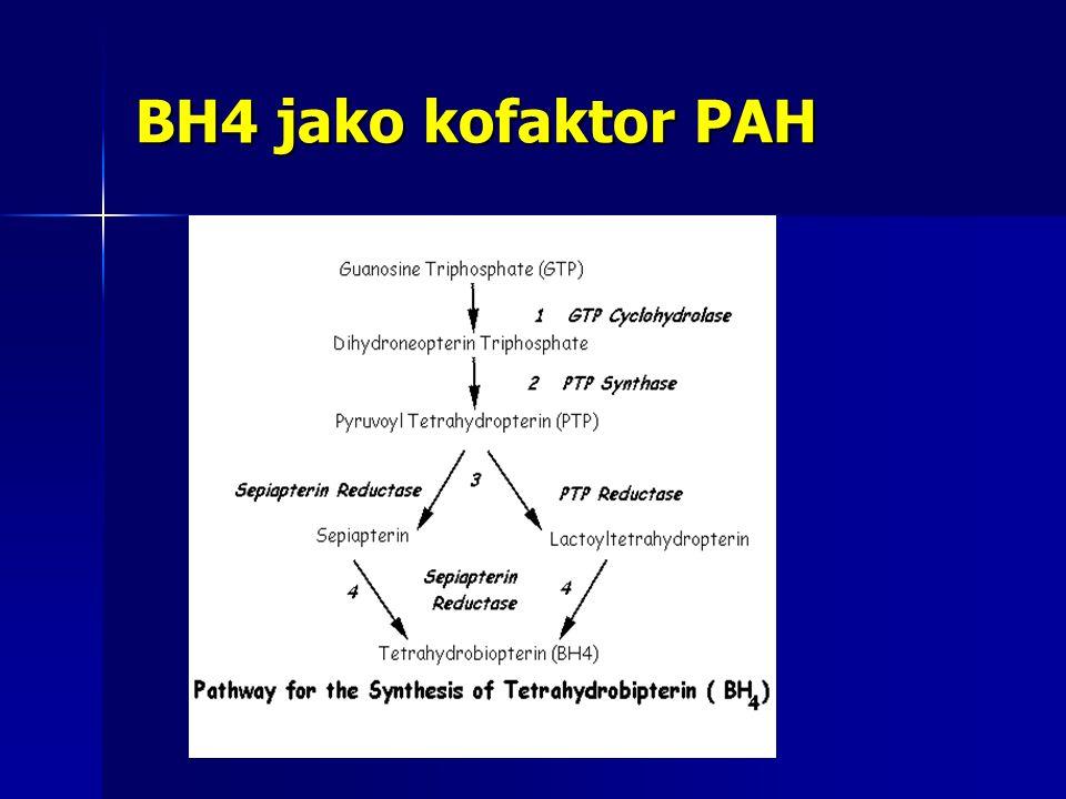 BH4 jako kofaktor PAH