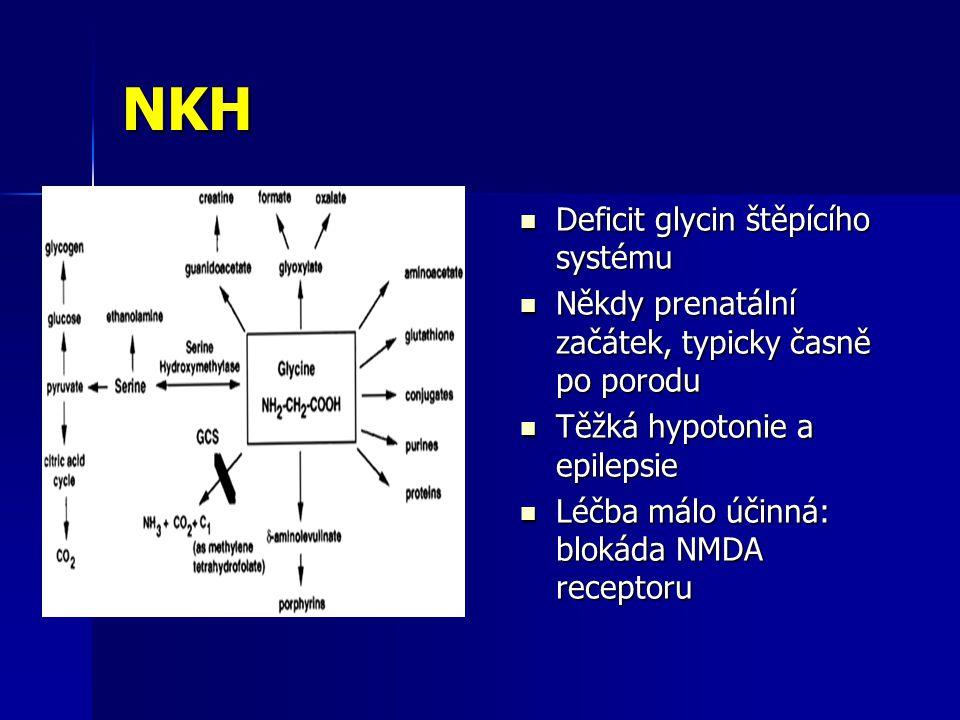 NKH Deficit glycin štěpícího systému Deficit glycin štěpícího systému Někdy prenatální začátek, typicky časně po porodu Někdy prenatální začátek, typicky časně po porodu Těžká hypotonie a epilepsie Těžká hypotonie a epilepsie Léčba málo účinná: blokáda NMDA receptoru Léčba málo účinná: blokáda NMDA receptoru