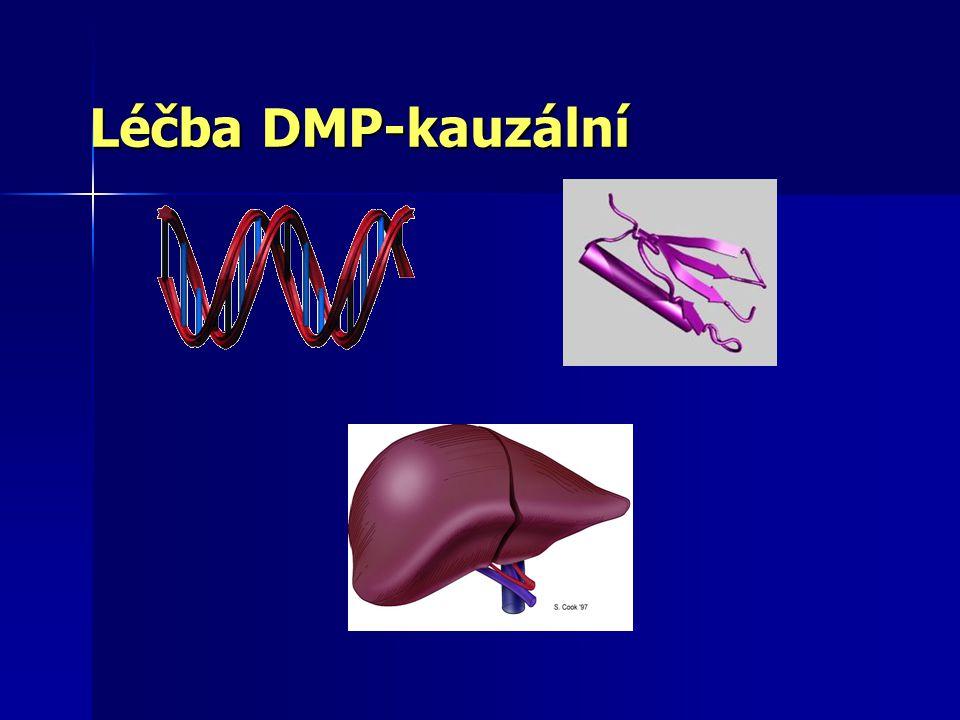 Léčba DMP-patogenetická Substrát produkt vedlejší produkt energie