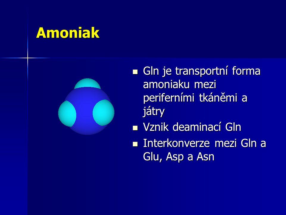 Amoniak Gln je transportní forma amoniaku mezi periferními tkáněmi a játry Gln je transportní forma amoniaku mezi periferními tkáněmi a játry Vznik deaminací Gln Vznik deaminací Gln Interkonverze mezi Gln a Glu, Asp a Asn Interkonverze mezi Gln a Glu, Asp a Asn