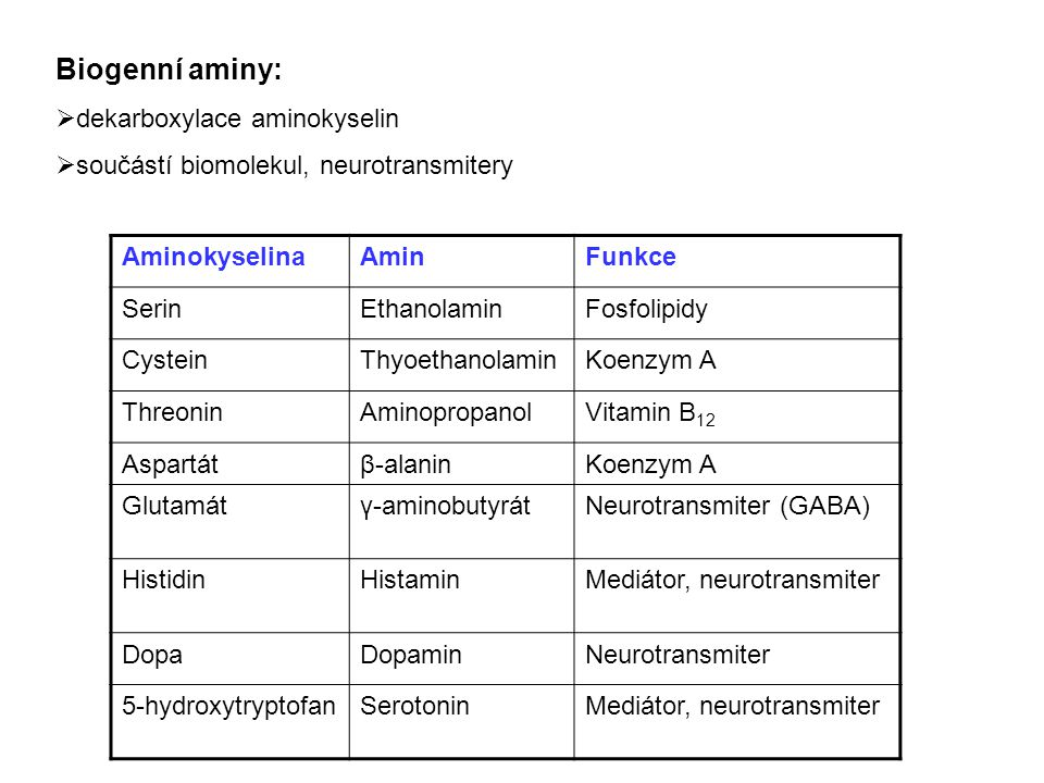 Biogenní aminy:  dekarboxylace aminokyselin  součástí biomolekul, neurotransmitery AminokyselinaAminFunkce SerinEthanolaminFosfolipidy CysteinThyoet