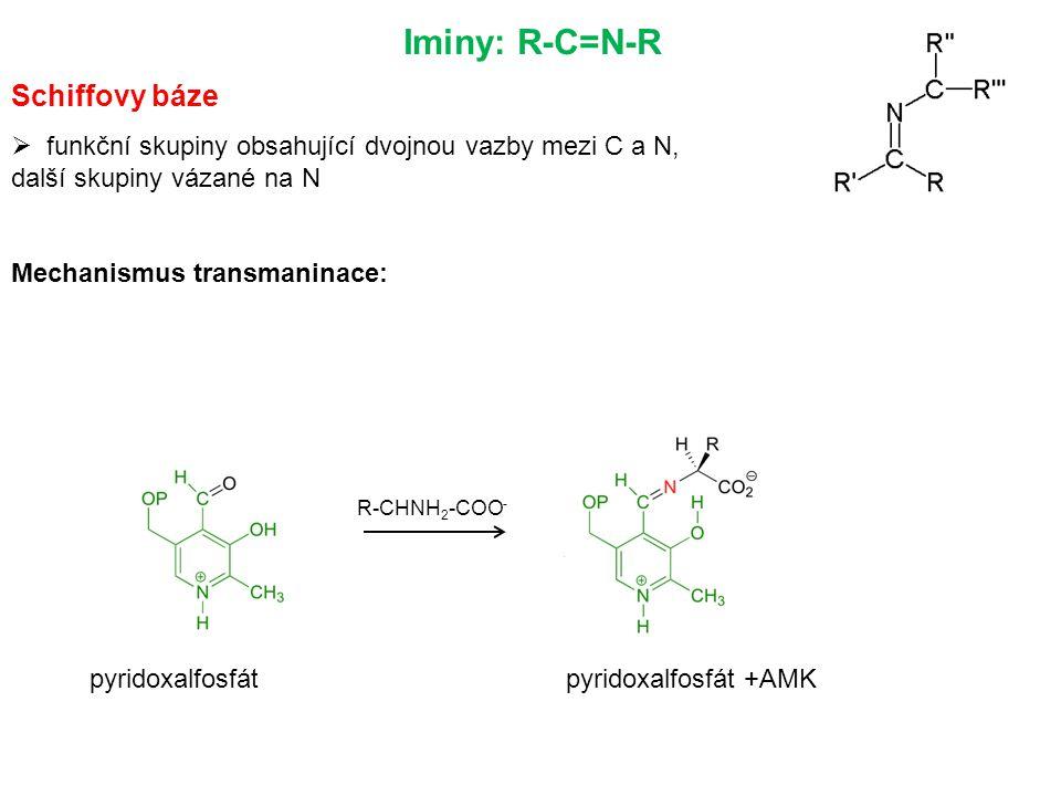 Iminy: R-C=N-R Schiffovy báze  funkční skupiny obsahující dvojnou vazby mezi C a N, další skupiny vázané na N Mechanismus transmaninace: R-CHNH 2 -COO - pyridoxalfosfátpyridoxalfosfát +AMK
