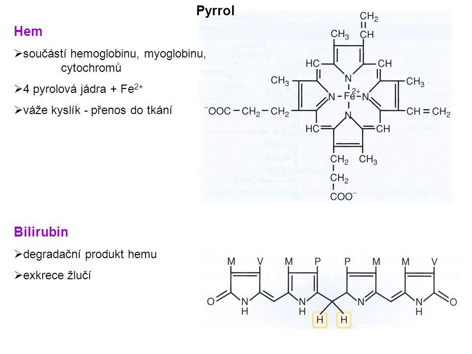 Hem  součástí hemoglobinu, myoglobinu, cytochromů  4 pyrolová jádra + Fe 2+  váže kyslík - přenos do tkání Bilirubin  degradační produkt hemu  exkrece žlučí Pyrrol