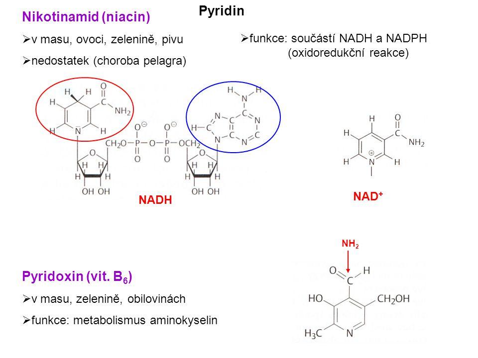 Nikotinamid (niacin)  v masu, ovoci, zelenině, pivu  nedostatek (choroba pelagra) Pyridoxin (vit.