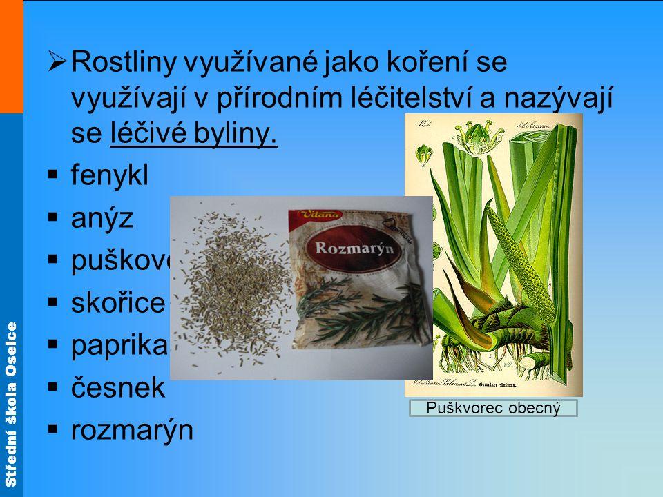 Střední škola Oselce  Rostliny využívané jako koření se využívají v přírodním léčitelství a nazývají se léčivé byliny.