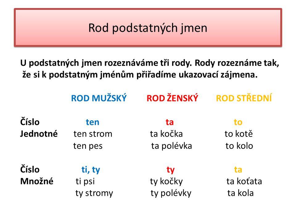 Rod podstatných jmen U podstatných jmen rozeznáváme tři rody.