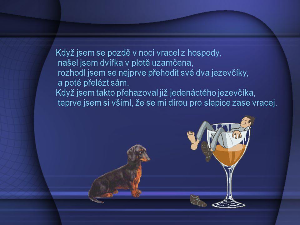Rozhovor opilce s příslušníkem VB:
